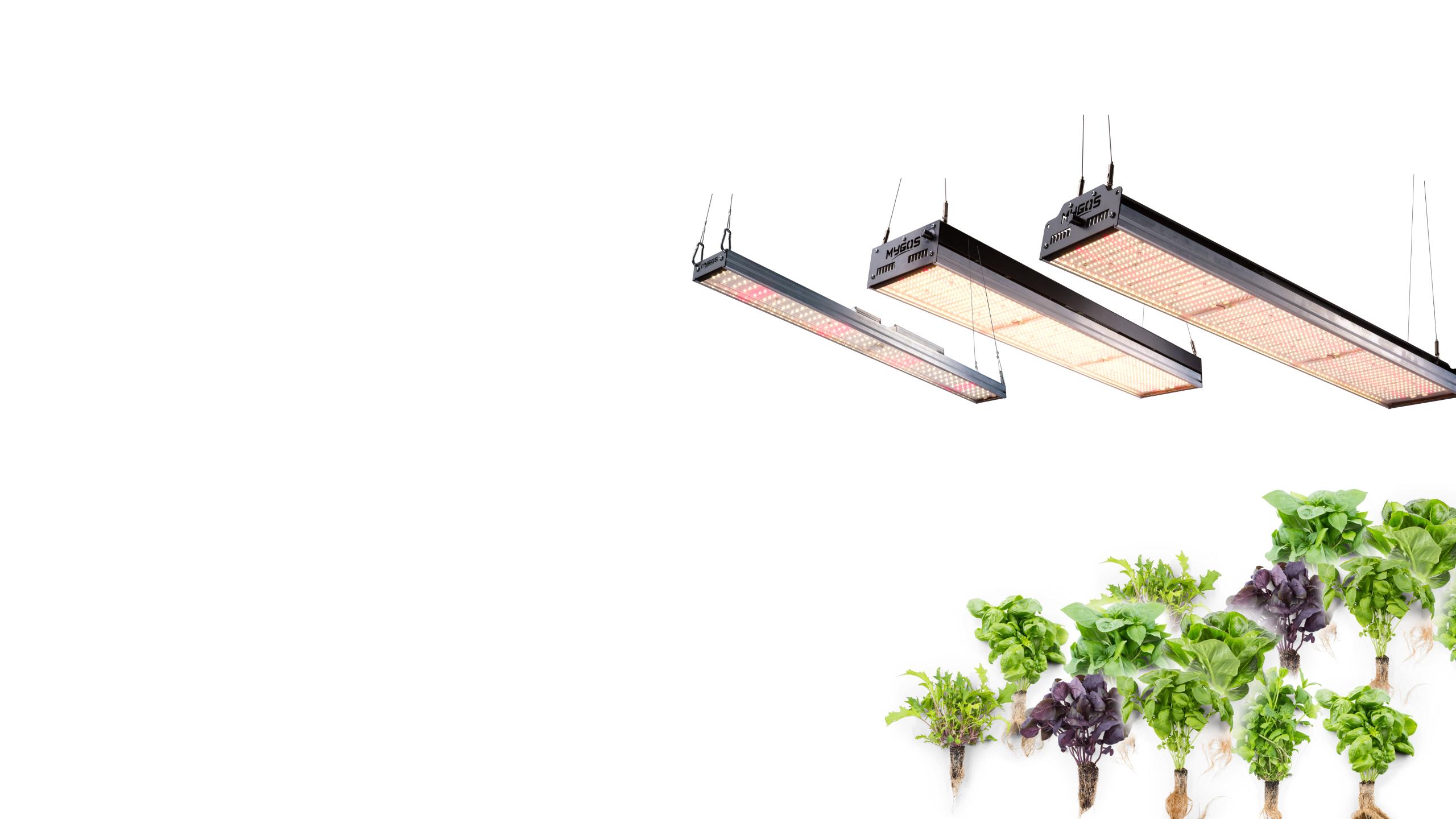 Parallax-bg_all-growlight-products.jpg